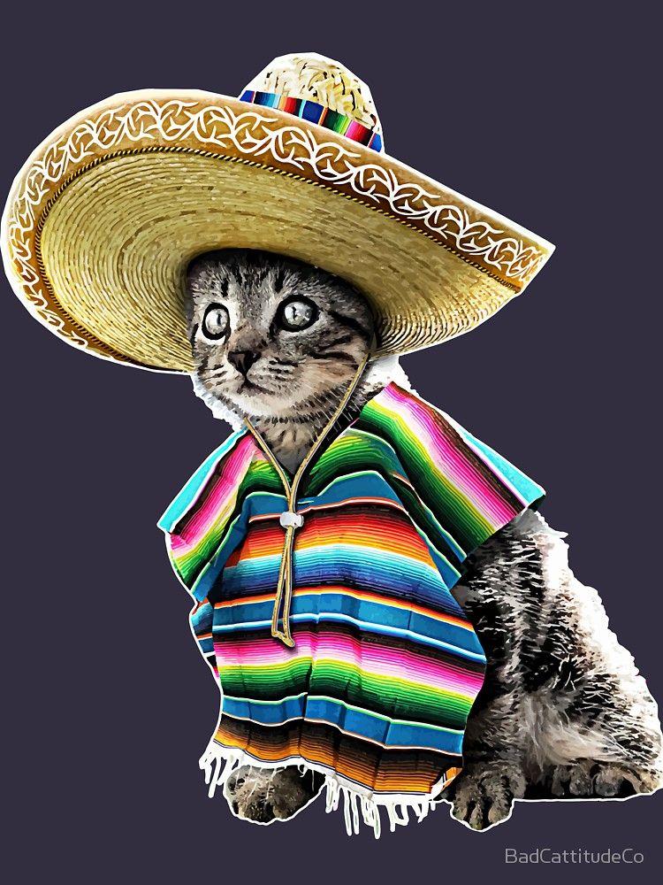 Funny Sombrero Cat Cinco De Mayo by BadCattitudeCo