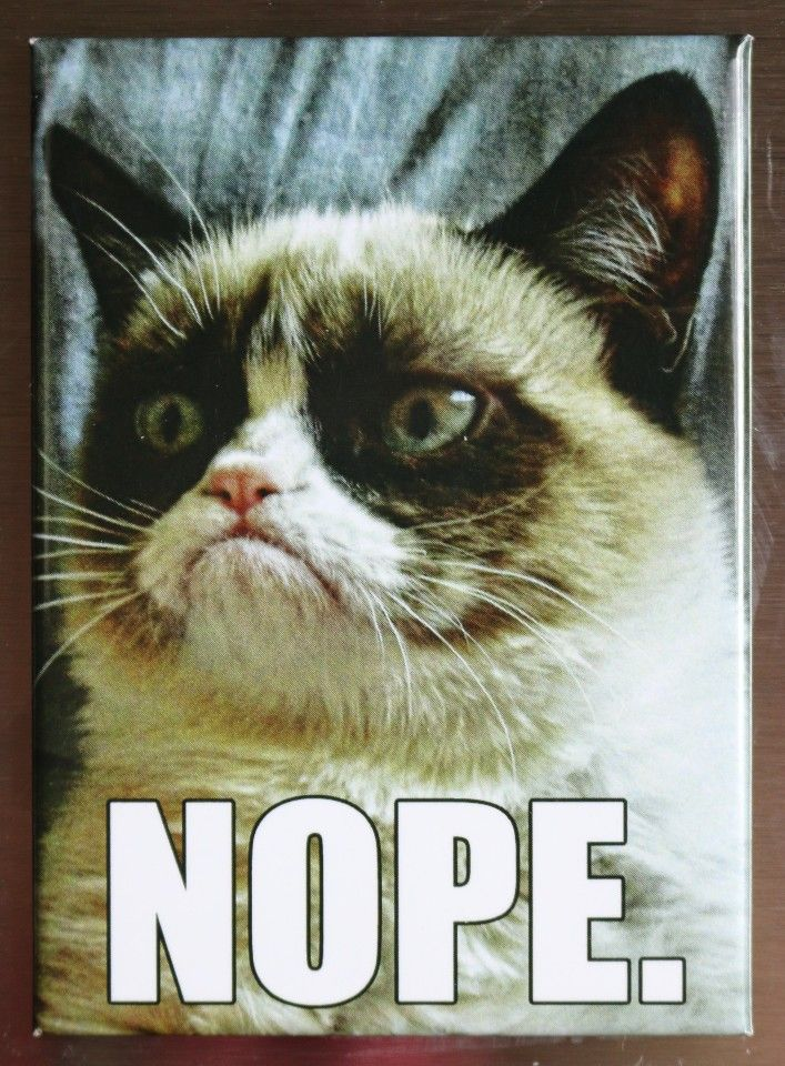 Grumpy Cat Nope FRIDGE MAGNET Funny Cat Meme edy ATAM
