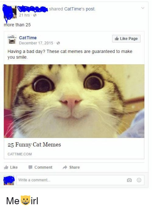 Bad Bad Day and Cats shared CatTime s post 21 hrs ore than 25