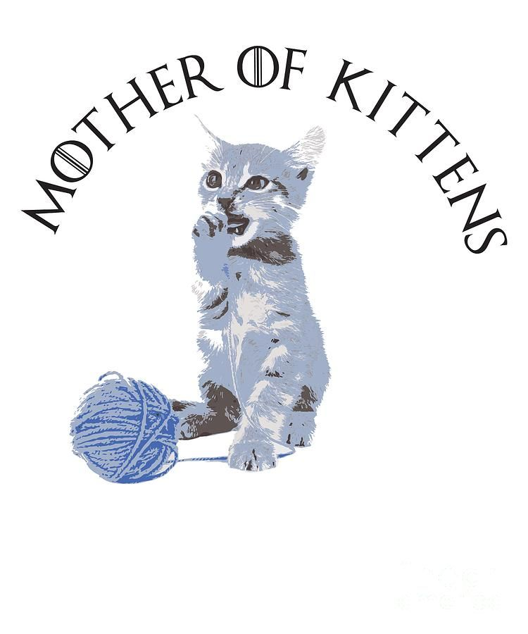 Cute Digital Art Mother Kittens Cute Funny Cat Mom Gift by Mike G