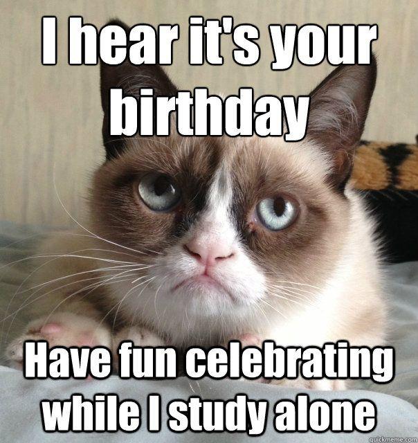 I Hear It s Your Birthday Cat Meme