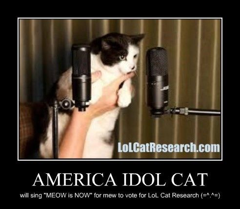 American Idol Cat will sing for you meow