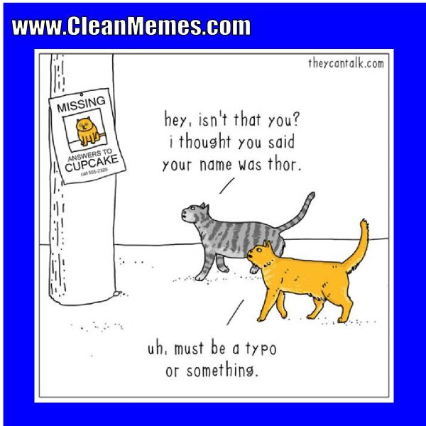 Author cleanmemesPosted on April 15 2017 Format ImageCategories Cat Memes Clean MemesTags Cat Memes Clean Funny Clean MemesLeave a ment on A