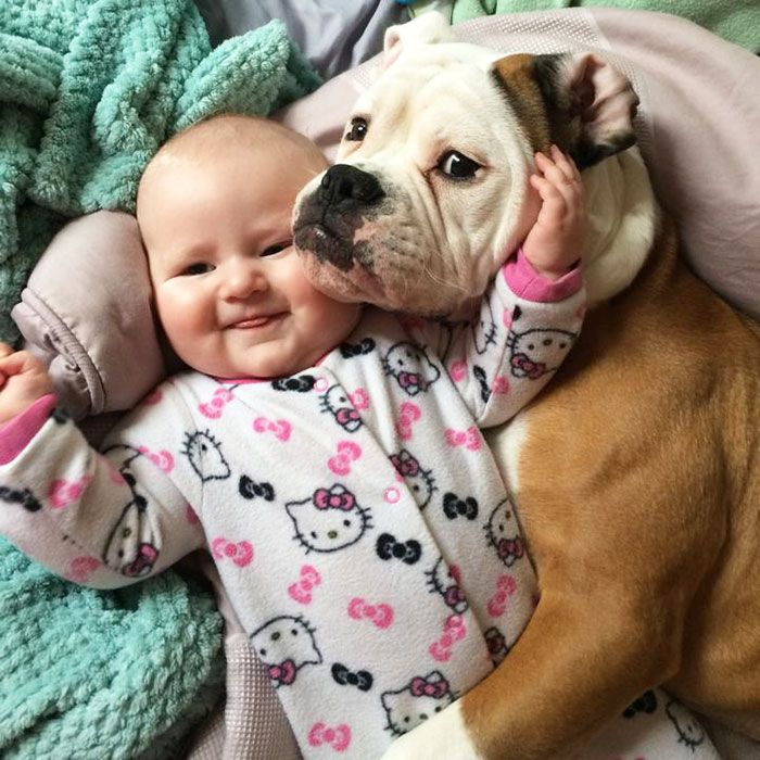 27 Baby With Dog