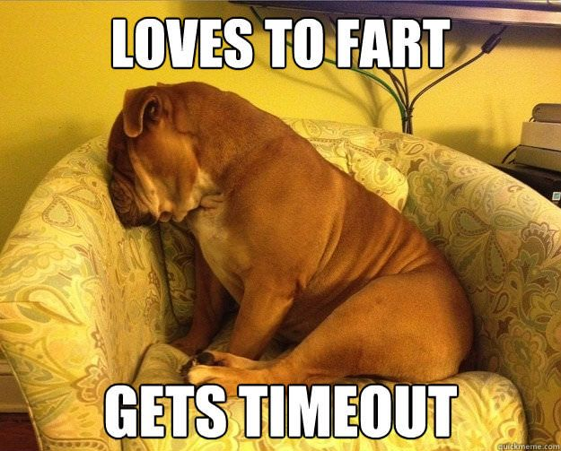 Loves To Fart Gets Timeout Funny Fart Meme Image