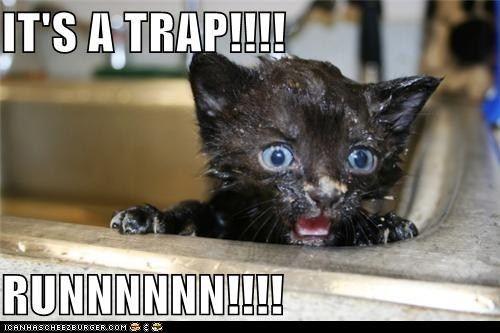 bath classic classics clean its a trap run trap wet