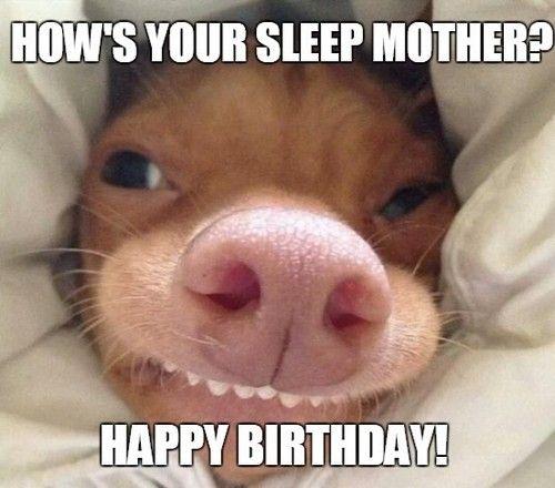 happy birthday mom memes wishesgreeting