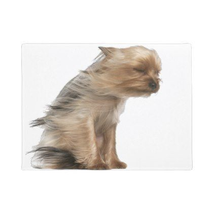 Yorkshire Terrier with Hair in the Wind Doormat yorkshire terrier puppy terriers dog dogs pet pets cute yorkshireterrier