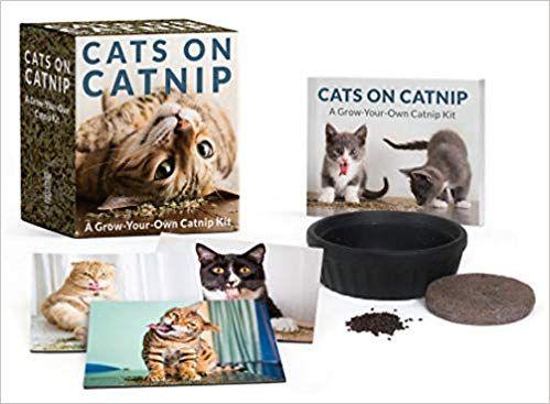 Cats on Catnip A Grow Your Own Catnip Kit Miniature Editions Andrew Marttila Amazon Books