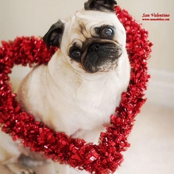 Buon San Valentino Buon San Valentino Pinterest