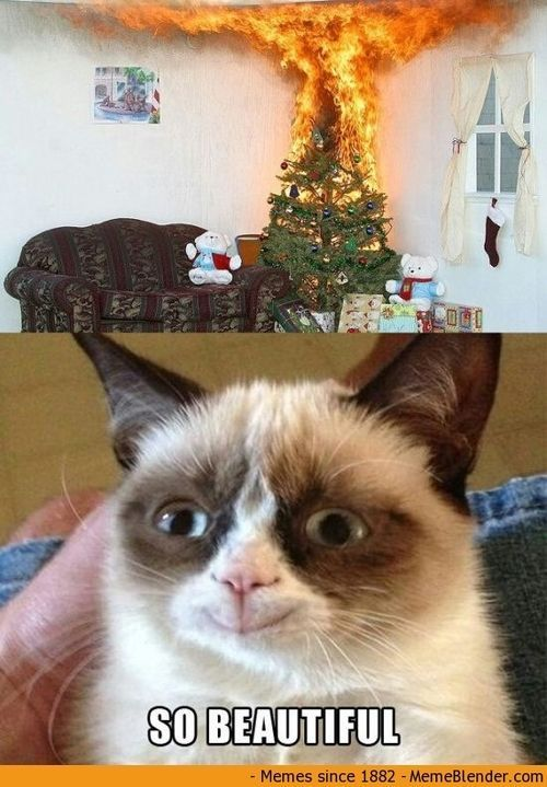 Now people are having him burn down Christmas trees What s next Grumpy Cat crying of joy for someone ting injured LOL