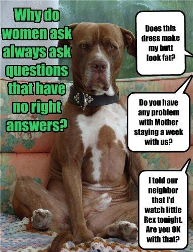 dogs caption questions women