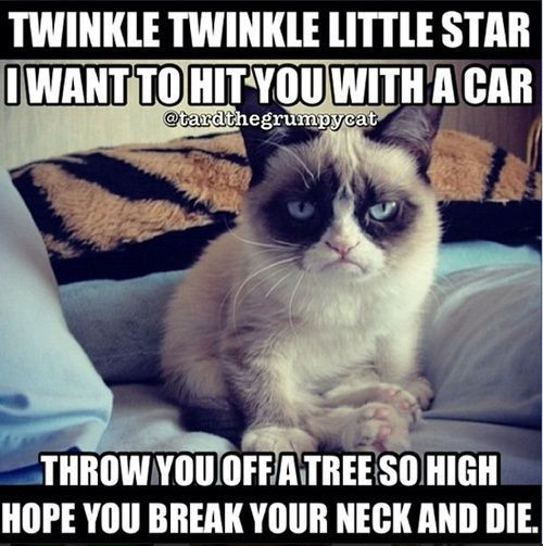 Grumpy cat quotes funny grumpy cat quotes grumpy cat jokes …For the funniest quotes and hilarious pictures visit
