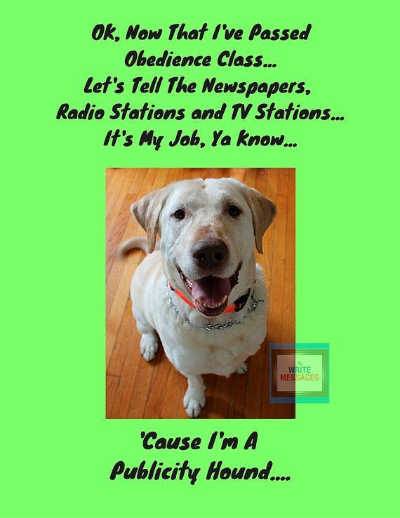 Funny Dog Lovers High Resolution Printable Wall Art For Instant Download