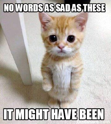 Cute Sad Cat Meme meme generator No words