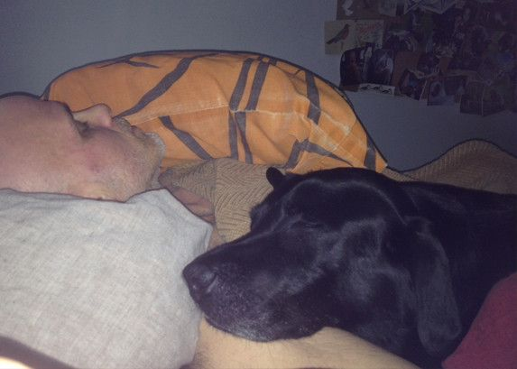 Doggie Purée