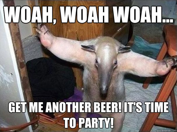 Woah woah woah me another beer it s time to party