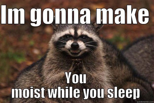 The evil raccoon IM GONNA MAKE YOU MOIST WHILE YOU SLEEP Evil Plotting Raccoon