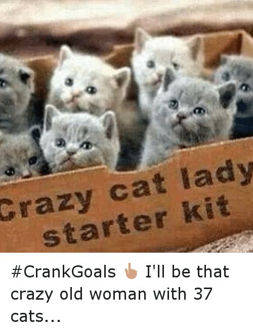 Cats Crazy and Funny Crazy cat lady starter kit CrankGoals 👆 I