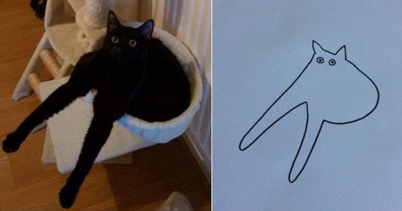 bad art cute cat pics poorly drawn cats terrible drawings cute cats funny cats cat drawings