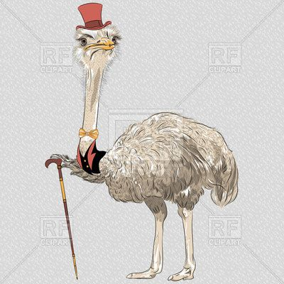 Funny ostrich gentleman in red top hat bowtie with walking stick Vector Image – Vector