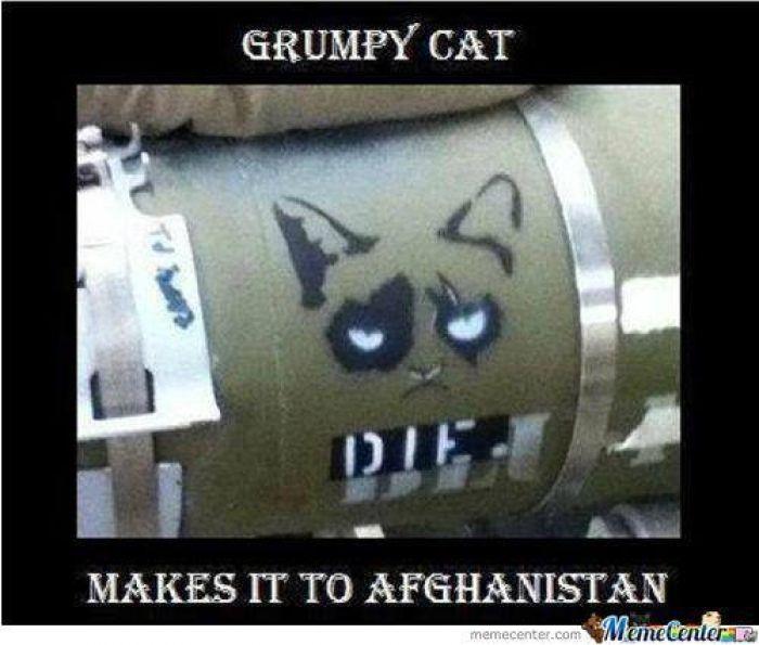 Grumpy Cat goes to Afghanistan