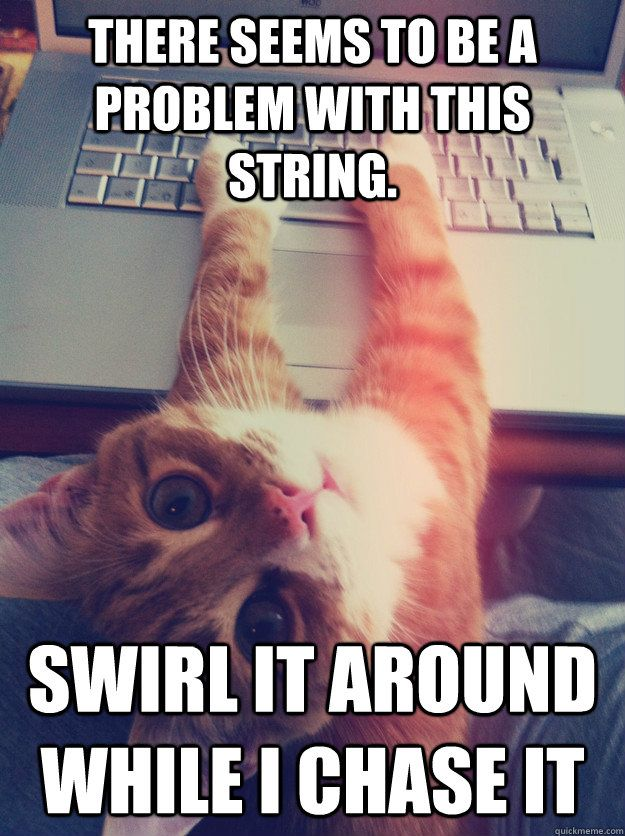 there seems to be a problem with this string swirl it around while i chase it