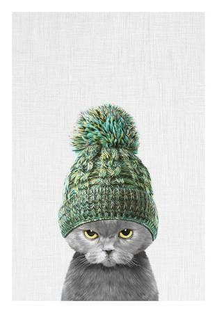 tai prints kitten wearing a hat u L F903SZ0