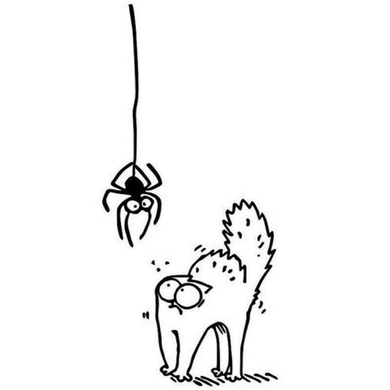 SCARED SPIDER SIMON S CAT Cartoon Car Sticker Funny Animal Window Decor Decal