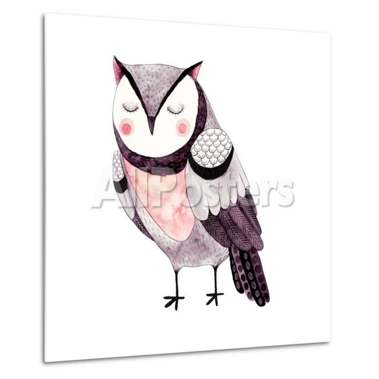 Watercolor Funny Kids Illustration with Owl Hand Drawn Animal Drawing Owl Bird Painting Perfect Print by Maria Sem at AllPosters