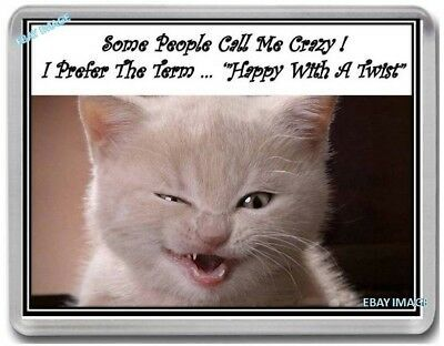 Cat Fridge Magnet Kitten Funny Cats Friend Sister Saying May fend Sb83