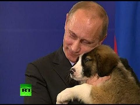A Dog s Heart Pet lover Putin needs name for fluffy puppy