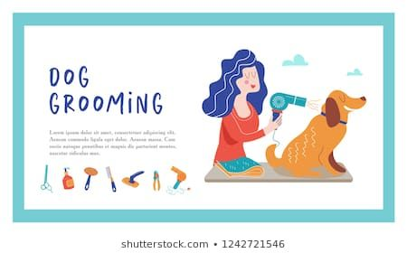 Cute dog at groomer salon Vector illustration for pet hair salon styling and grooming