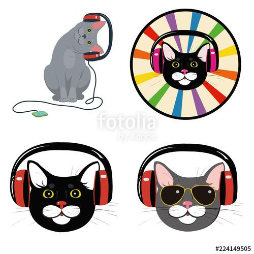 funny cat in the music headphones Set of four illustrations