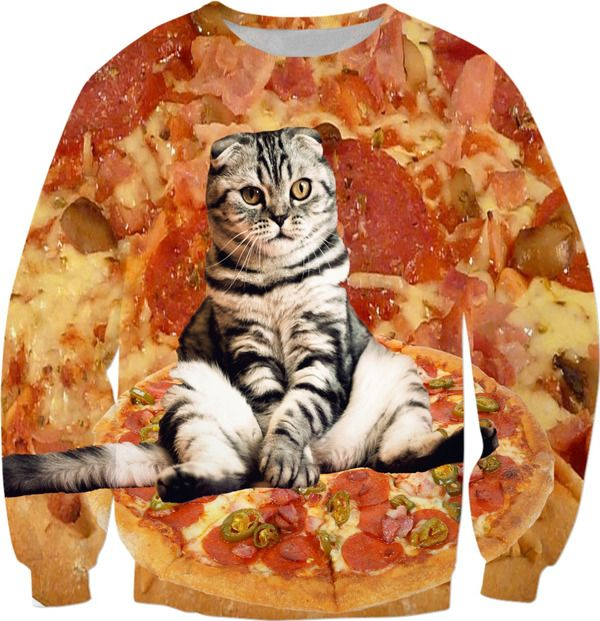 Pizza Cat Sweatshirt Funny animals Angry cat and pizza Cute kitty cat