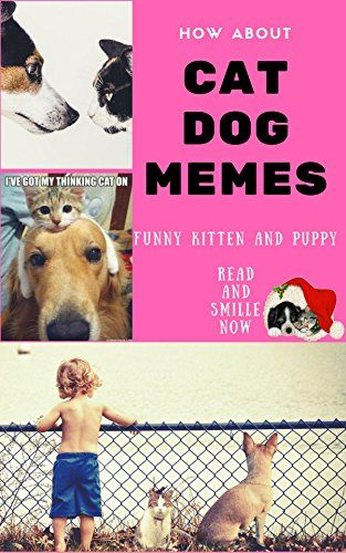 HOW ABOUT CAT DOG MEMES FUNNY KITTEN PUPPY DOG CAT JOKE GAG AND LOVER OF