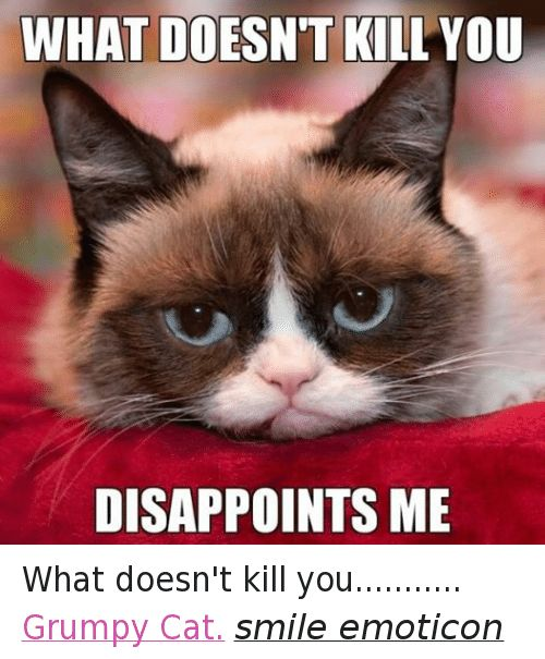 Cats Disappointed and Grumpy Cat WHAT DOESN T KILL YOU DISAPPOINTS ME