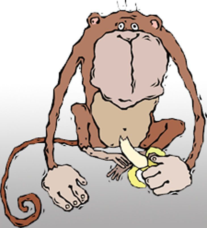 funny monkey drawing 56c0b7bf5f9b5829f8672d17