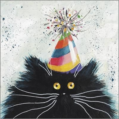 Funny Cat Greeting Card Party Cat Kim Haskins Art Any Occasion Birthday Card