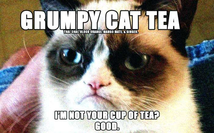 grumpy cat pictures label funny christmas