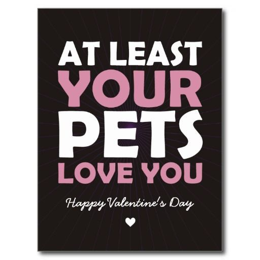At Least Your Pets Love You Post Card Anti Valentines Day Funny Valentine Valentine