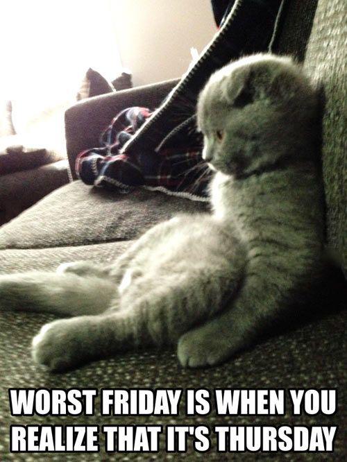 Definitely the worst Friday…