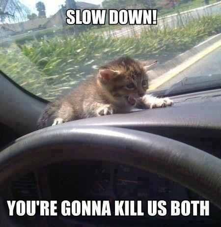 slow down dude