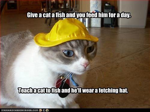 Collect the Inspirational Funny Cat Fishing Memes