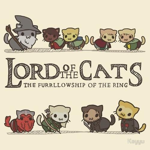 lord of the cats pusheen cat on we heart it rh weheartit Grumpy Cat Lord of the Rings Cast