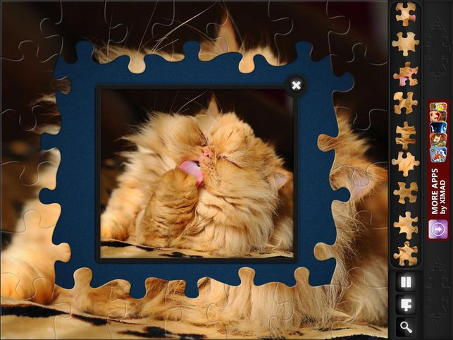 Jigsaw Puzzles Funny Cats 4