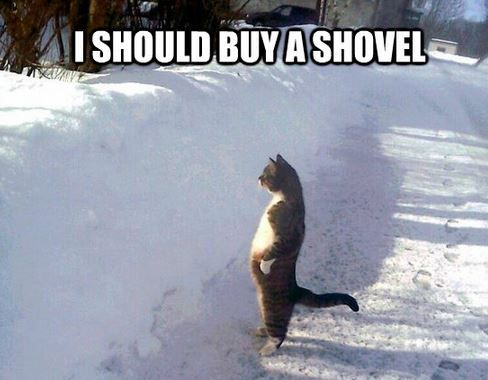 7 50 Funniest Winter Memes All Time