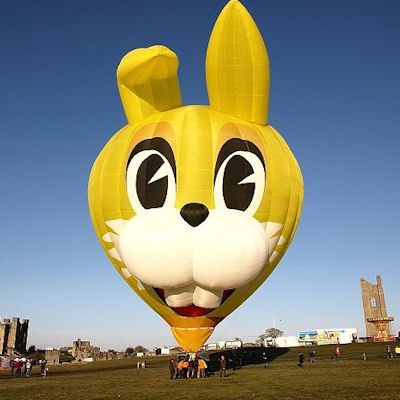 Funny Cat Face Air Balloon Picture