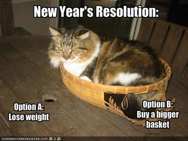Funny new years resolutions fat cat