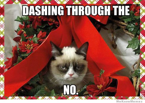 dashing through the no grumpy cat meme